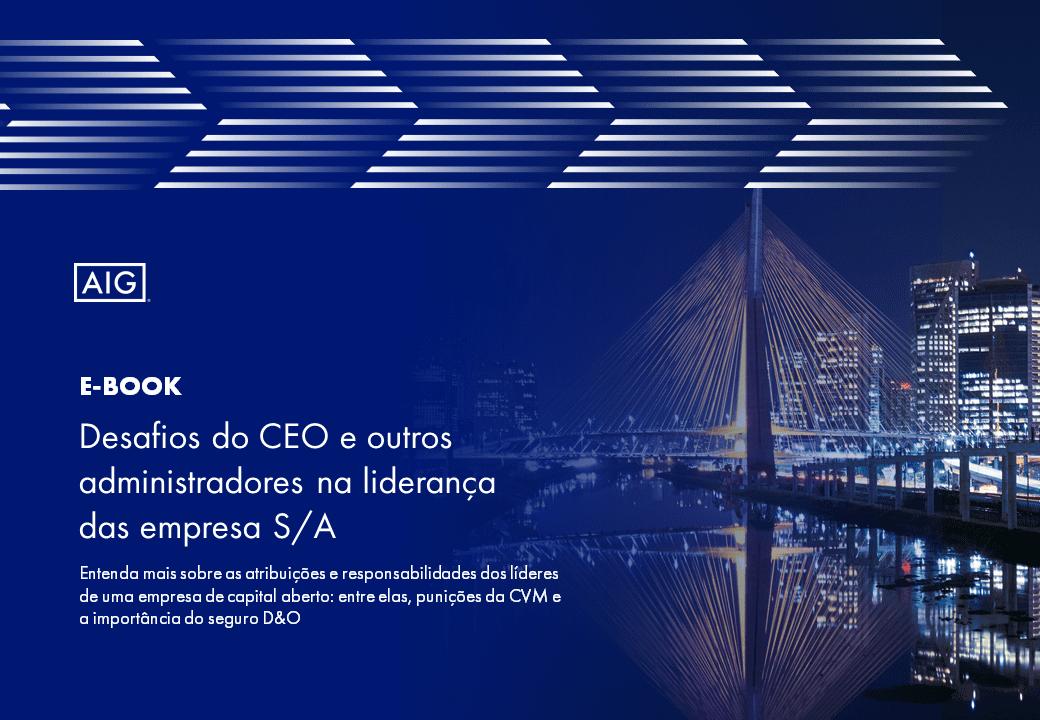 Desafios do CEO e outros administradores na liderança das empresas S/A