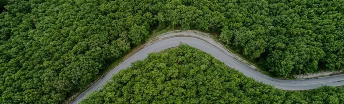 Podcast especial Mês do Meio Ambiente: por que investir em programas de prevenção do risco ambiental para empresas?